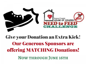 Donate to Need to Feed